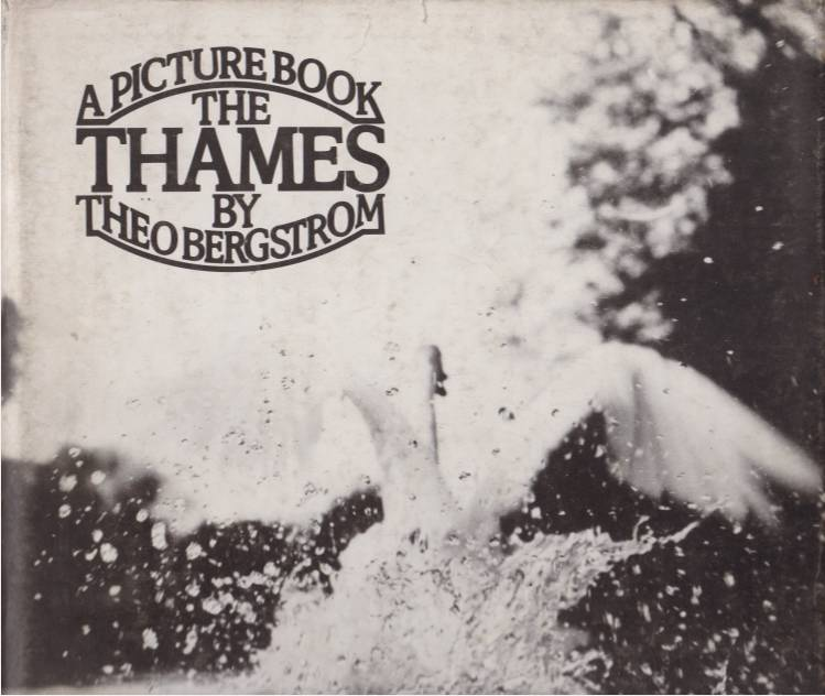 Image for THE THAMES A Picture Book