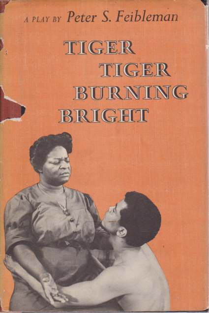 Image for TIGER TIGER BURNING BRIGHT