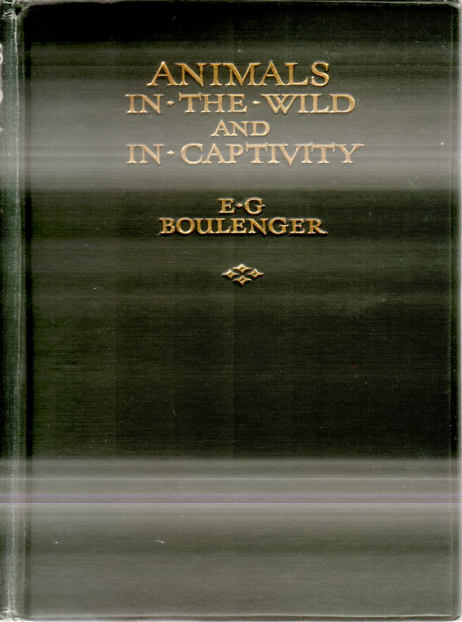 Image for ANIMALS IN THE WILD AND IN CAPTIVITY