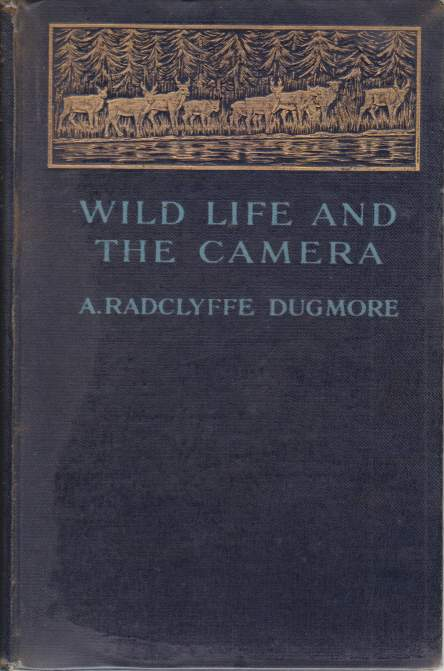 Image for WILD LIFE AND THE CAMERA