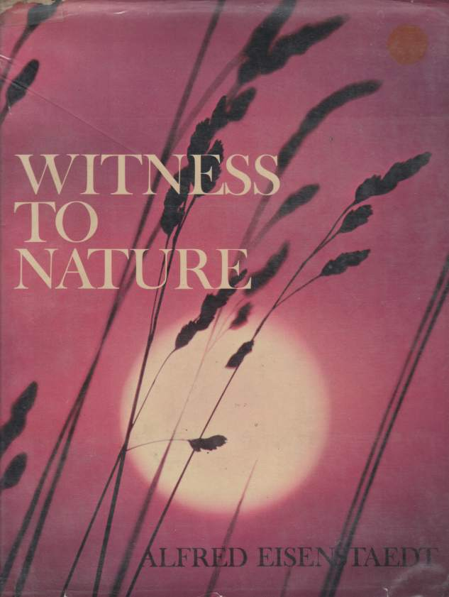 Image for WITNESS TO NATURE