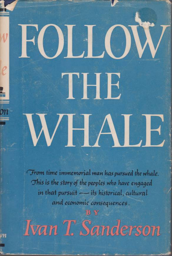 Image for FOLLOW THE WHALE