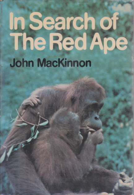 Image for IN SEARCH OF THE RED APE