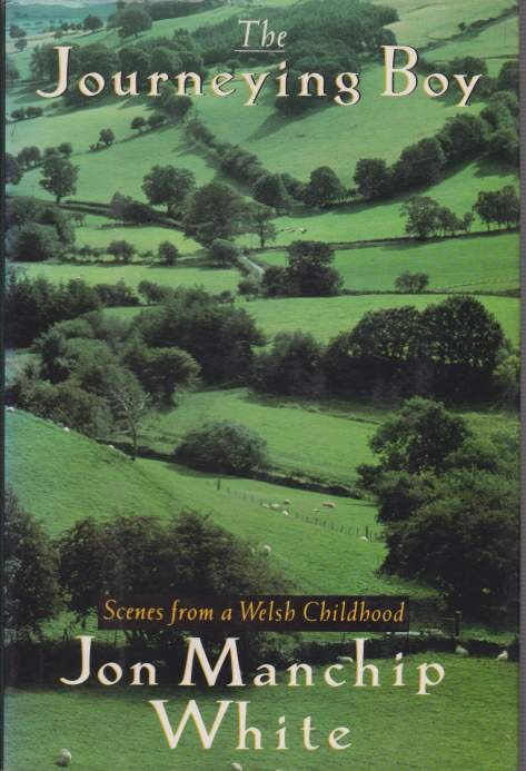 Image for THE JOURNEYING BOY Scenes from a Welsh Childhood