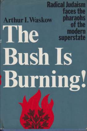 Image for THE BUSH IS BURNING Radical Judaism Faces the Pharaohs of the Modern Superstate