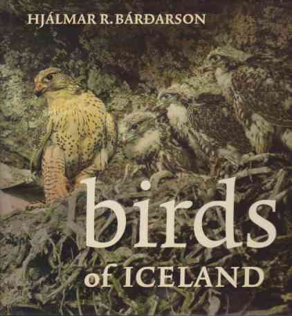 Image for BIRDS OF ICELAND