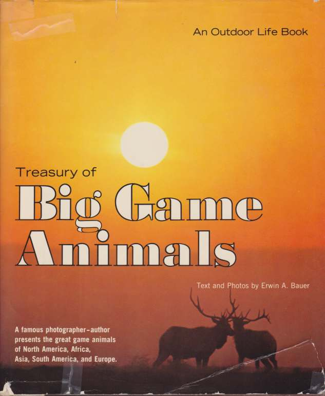 Image for TREASURY OF BIG GAME ANIMALS