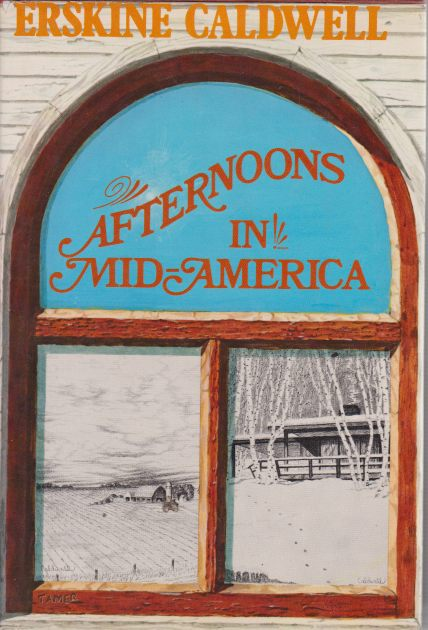 Image for AFTERNOONS IN MID-AMERICA Observations and Impressions