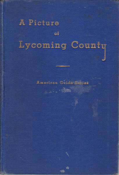 Image for A PICTURE OF LYCOMING COUNTY