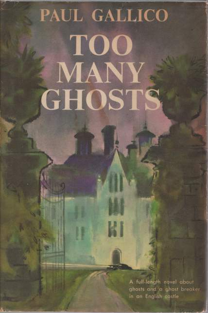 Image for TOO MANY GHOSTS